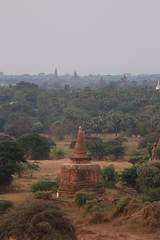 2016myanmar_0359 (ppana) Tags: bagan alodawpyay pagoda ananda temple bupaya dhammayangyi dhammayazika gawdawpalin gubyaukgyi myinkaba wetkyiin htilominlo lawkananda lokatheikpan lemyethna mahabodhi manuha mingalazedi minochantha stupas myodaung monastery nagayon payathonzu pitakataik seinnyet nyima pagaoda ama shwegugyi shwesandaw shwezigon sulamani thatbyinnyu thandawgya buddha image tuywindaung upali ordination hall