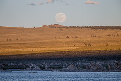 Moon Rise Over Mono Lake South Tufa (Jeffrey Sullivan) Tags: california travel copyright usa moon nature june rock canon landscape photography eos evening photo full astrophotography astronomy rise tufa allrightsreserved formations 6d easternsierra 2016 monocounty jeffsullivan