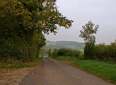Country road (2010) (Caulker) Tags: road october rainyday somerset 2010