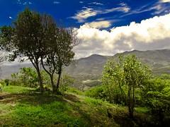 Cielo tropical (Bonsailara1) Tags: blue trees sky mountains azul clouds de landscape venezuela paisaje cerro lara cielo nubes montaa martes nwn pasoreal bonsailara1
