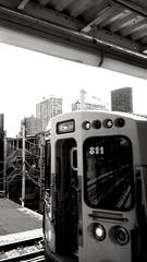 platform views (williamw60640) Tags: blackandwhite chicago skyline train redline trainplatform urbanlandscape elevatedtrain hirise chicagotransitauthority cityscenes howardline ctatransitstation