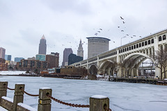 Frozen & Cold Cleveland (markmapaphotography) Tags: city winter snow cold water birds frozen cityscape cleveland
