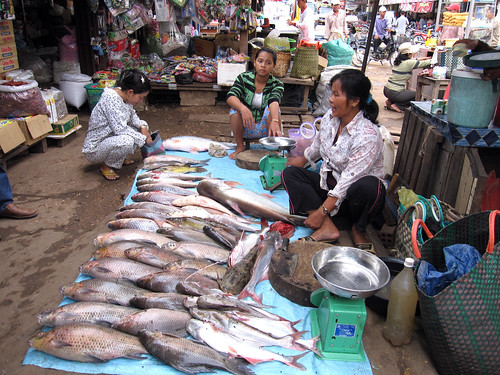 Fish market in Cambodia. Photo by Jharendu Pant, 2009.