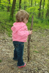 Walking... (Bluestep) Tags: ohio fun one spring infant walkingstick playinginthewoods huntingmorels