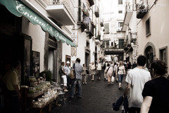 Shopping in Amalfi (JohnBentley) Tags: plants plant petal plantlife englanduk otherkeywords