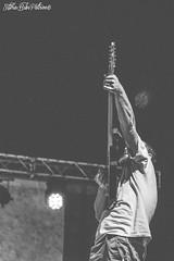 GAZEBO PENGUINS @ Pedepalooza (TV) - 20/07/13 (Silvia (Bibi) Patron) Tags: musician music festival penguins photographer andrea gazebo gabriele pietro capra petev sollo cottafavi malavasi sologni pedepalooza