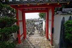 DSC_0767_DxO (amaury_217) Tags: voyage trip travel tourism japan vacances nikon tourist adventure backpacker vacations japon d800 amaury aventure voyageur amaury217
