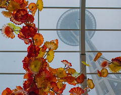 needle from the atrium (fuzzpup) Tags: seattle flowers chihuly cloudy massive spaceneedle glassblowing chihulygardensandglass
