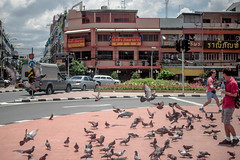 Excited by the Birds (Gregory Desimone) Tags: city birds 35mm canon thailand happy rebel flying bangkok pigeons flock t1i