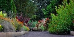 Duke Gardens. (tehLEGOman) Tags: flower nature garden nc durham northcarolina duke dukegardens durhamnc dukeuniversity sarahpdukegardens