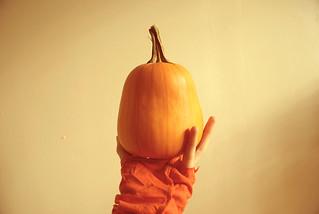 Handful Of Fall