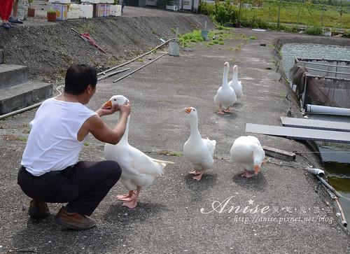 漁樂_032.jpg