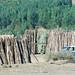 19_2009_01_Ethiopia_034