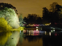 Across the Lake (Gilder Kate) Tags: christmas xmas kewgardens kew night dark festive twilight nightlights illuminated afterdark botanicgardens royalbotanicgardens lightsatnight illuminatedtrail christmasatkew