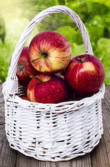 Apples in a white wicker basket (gorobina) Tags: red summer food white plant color green apple nature up closeup fruit garden table dessert outdoors wooden leaf juicy healthy colorful basket close natural bright sweet many background napkin harvest lifestyle nobody fresh whole health snack meal vegetarian taste organic wicker pure refreshing heap calorie ripe nutrition nutritious ingredient vitamin