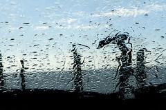 Blue Rain (paulorocha1970) Tags: street blue people urban rain umbrella streetview