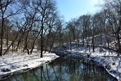 Bronx River Triptych (Eddie C3) Tags: newyorkcity winter snow nature rivers newyorkbotanicalgarden natureinthecity bronxriver