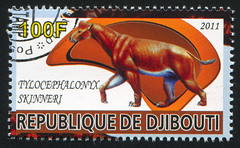 Djibouti 0323 m (roook76) Tags: 2011 djibouti seal aged ancient animal animals antique big colossal cover enormous envelope gigantic historic jurassic letter mail message monster monstrous old palaeontology paleontology philately postage postcard postmark prehistoric prehistory reptile retro stamp teeth tooth vintage wild