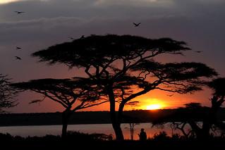Sunset Kenya, Amboseli