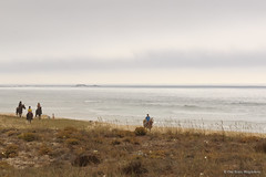 Jinetes en la playa.. (PITUSA 2) Tags: espaa naturaleza mar agua playa paisaje galicia cielo pitusa acorua jinetes portodoson asfurnas elsabusto