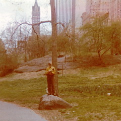 1970062? cp-on-rock-with-book (Jym Dyer) Tags: nyc newyorkcity centralpark jym throwbackthursday