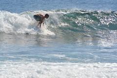 DSC_0067 (aliciadesign) Tags: surf whales bigisland honolii