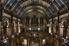 The museum is closing! (OrkoLuca) Tags: city greatbritain light england building london history