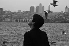 DSC_0411 (barissancak) Tags: monochrome kid gulls istanbul thinking uskudar