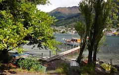 IMG_8943 (aquepontochegamos) Tags: voyage trip travel viaje newzealand sunlight lake cold flower nature gardens lago island south flor jardim nz viagem otago queenstown voltaaomundo rtw frio travelers oceania aquepontochegamos routetheworld