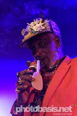 lee-scratch-perry-dub-cahmpions-festival-2015-WUK-20.jpg