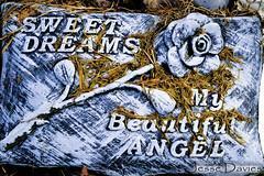 Sweet Dreams WM (Jesse Davies) Tags: boy beautiful cemetery grave graveyard rose angel cross sweet praying dreams