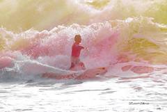 Surfeur 26 (Zoomtero) Tags: life love surf surfing vague vende surfeur stgillescroixdevie