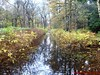 """15-11-2009            Gooise lus       18.5 KM    NS Wandeltocht  (16) • <a style=""""font-size:0.8em;"""" href=""""http://www.flickr.com/photos/118469228@N03/16388243987/"""" target=""""_blank"""">View on Flickr</a>"""