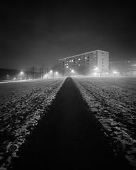 Mamiya RZ67 - BW - IlfordDelta100 - Rosengrd III (Gustaf_E) Tags: bw snow analog 50mm skne vinter sweden 120film sverige f80 malm sn natt ilforddelta100 svartvitt kvll mamiyarz67 hghus imacon frort miljonprogram