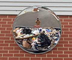 Reflection #6 (Joe_Petykowski_Jr) Tags: reflection trash garbage rubbish iphone 52weeksthe2015edition week62015 weekstartingthursdayfebruary52015