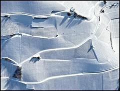 L'hiver du vigneron (JMVerco) Tags: winter white snow switzerland vineyard suisse hiver neve neige inverno vignoble bianco blanc vigne vigna coth swizzera coth5 sailsevenseas