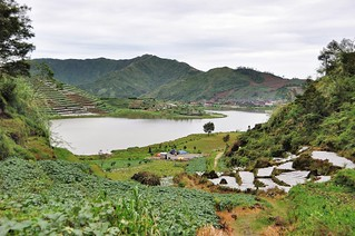 dieng plateau - java - indonesie 21
