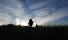 (guah) Tags: blue sky cloud white black holland nature grass silhouette landscape noir dune bleu ciel nuage paysage paysbas blanc herbe hollande