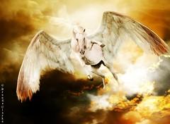 Pegasus (~Brenda-Starr~) Tags: pegasus fantasy allrightsreserved fantasie wingedhorse may2016