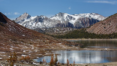 Spring is Coming to the High Sierra! (Jeffrey Sullivan) Tags: california copyright usa sun jeff nature june canon landscape photography star photo google venus pass trails lee transit photowalk sullivan 2012 tioga vining easternsierra 5dmarkiii