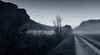 where thou art, that is home... (richy vanesio) Tags: bw nature fog suedtirol neumarkt argine egna unterland bassaatesina argineadige tomdelades