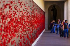 War Memorial-3129 (A u s s i e P o m m) Tags: au australia campbell australiancapitalterritory