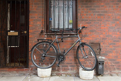 Pots (SReed99342) Tags: uk england london window bicycle lock grill pots westhampstead