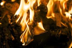 the beginning and the end. (daniel_james) Tags: fire flames australia stump nsw bentley northcoast blundstones 2016 northernrivers tamron60mmmacro burningoftheboots