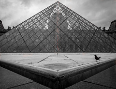 Pyramide du Louvre (olipennell) Tags: paris france building bird animal frankreich ledefrance louvre crow fr gebude tier vogel krhe pyramidedulouvre
