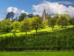 Hulsberg Castle (enneafive) Tags: blue trees light sky green castle nature grass clouds rural hill slope borgloon hulsberg