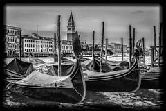 Venice (Zeger Vanhee) Tags: venice texture water gondolas vaporetto medievalarchitecture veniceviews
