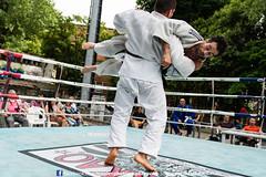 VAG61 - 28 Maggio 2016 (Ivan Leo Photographer) Tags: thai bologna gym sempre dlf muaythai avanti palestrina sociale thaiboxe