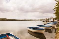 Barques (Cris_Figueras) Tags: relax pau barques banyoles estany
