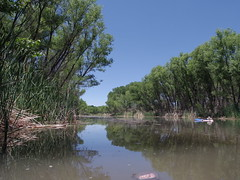 River day, June 19 (EllenJo) Tags: pentax cottonwoodarizona 2016 june19 jailtrail 86326 ellenjo ellenjoroberts pentaxqs1